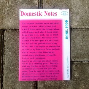 Domestic Notes - Nuraini Juliastuti