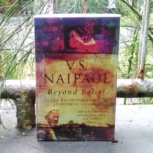 Buku - Beyond Belief