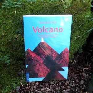 Buku - Volcano (2)