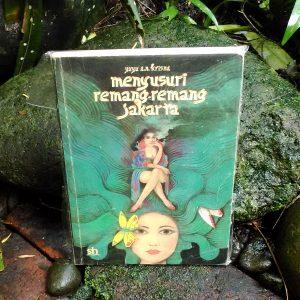 Buku - Menyusuri Remang-Remang Jakarta
