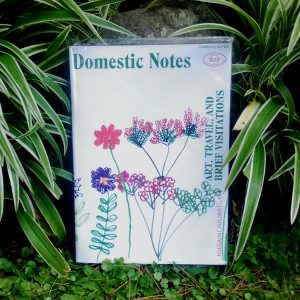 Zine - Domestic Notes 2