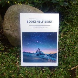 Zine - Bookshelf Brief