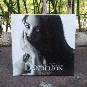 CD Monita Tahalea - Dandelion