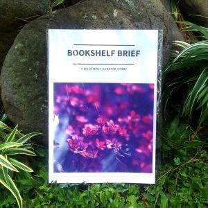 Zine - Bookshelf Brief 2