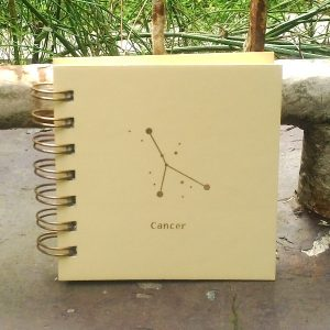 Mini Square Notebook - Cancer